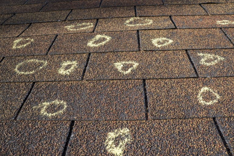 Hail Damage St Paul? - Free Storm Damage Inspections Here - Hail Damage Circled on Shingles by an Assessor