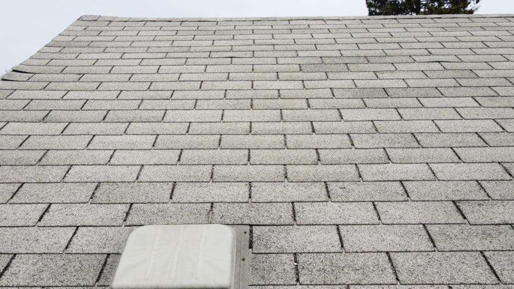 How often do roofs need to be replaced ?