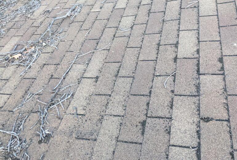 Insurance adjuster says no hail damage