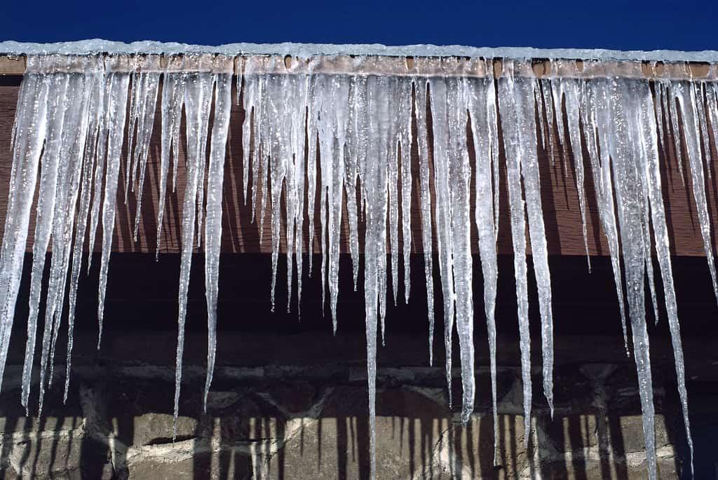 #1 Ice Dam Removal in Saint Paul & New Brighton, Minnesota