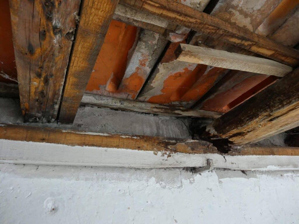 Water Damage Restoration New Brighton &